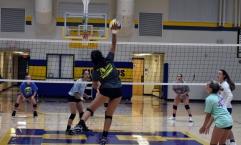 volleyball (27)