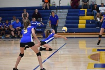 volleyball.MS (6)